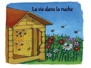 La vie dans la ruche