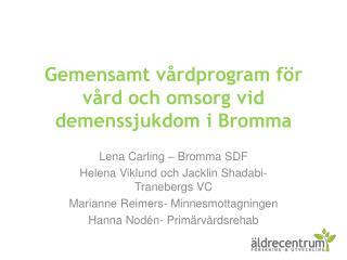 Gemensamt v rdprogram f r v rd och omsorg vid demenssjukdom i Bromma
