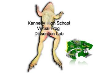Kennedy High School Virtual Frog  Dissection Lab