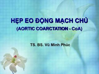 HP EO  NG MCH CH AORTIC COARCTATION - CoA