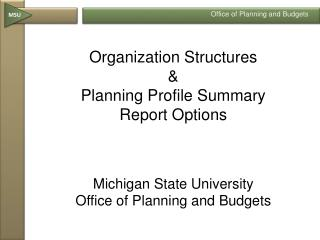 Organization Structures   Planning Profile Summary  Report Options    Michigan State University  Office of Planning and