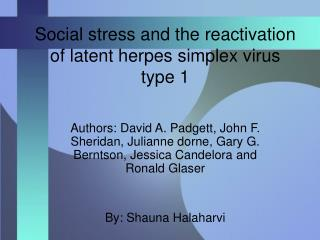 Social stress and the reactivation of latent herpes simplex virus type 1