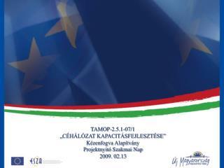 TAMOP-2.5.1-07