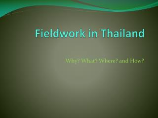 Fieldwork in Thailand