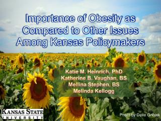 Importance of Obesity as Compared to Other Issues Among Kansas Policymakers