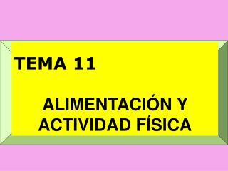 TEMA 11  ALIMENTACI N Y ACTIVIDAD F SICA
