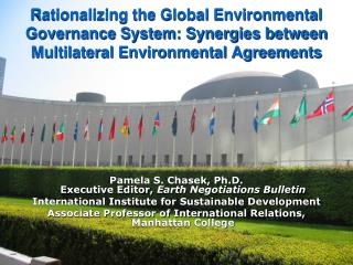 Rationalizing the Global Environmental Governance System: Synergies between Multilateral Environmental Agreements