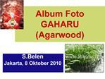 Album Foto GAHARU Agarwood