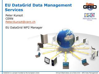 Peter Kunszt CERN Peter.Kunsztcern.ch EU DataGrid WP2 Manager