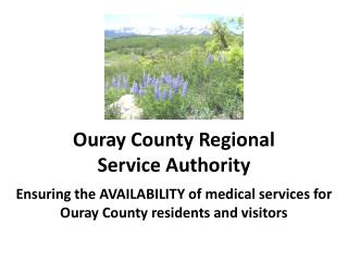 Ouray County Regional  Service Authority