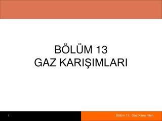 B L M 13 GAZ KARISIMLARI