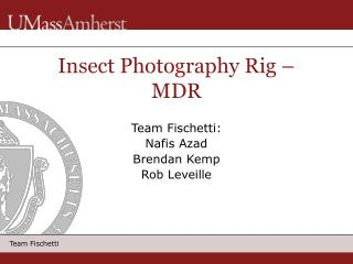 Insect Photography Rig   MDR