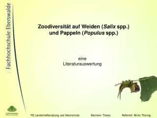 Zoodiversit t auf Weiden Salix spp.  und Pappeln Populus spp.