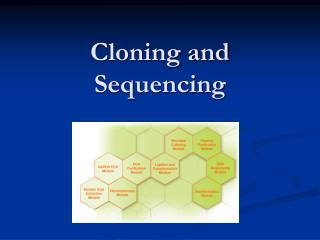 Cloning and Sequencing