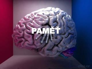 PAMET