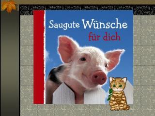 Ich w nsche Dir einen ganzen Korb voll Schwein bei allem, was Du noch vorhast.