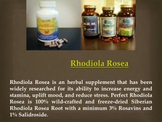 Buy Rhodiola