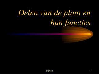 Delen van de plant en hun functies