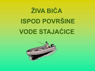 IVA BICA