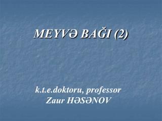 MEYV BAGI 2