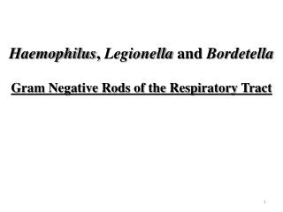 Haemophilus, Legionella and Bordetella  Gram Negative Rods of the Respiratory Tract
