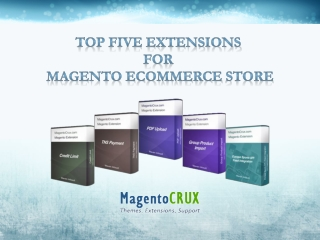 Top five Extensions  For  Magento Ecommerce Store