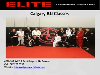 What is BJJ Classes ?