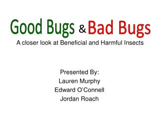 A closer look at Beneficial and Harmful Insects