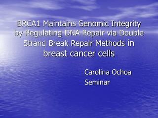 BRCA1 Maintains Genomic Integrity by Regulating DNA Repair via Double Strand Break Repair Methods in breast cancer cells