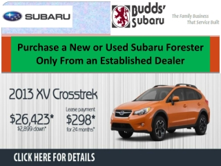 Purchase a New or Used Subaru Forester Only From an Establis