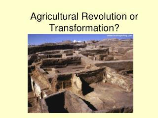 Agricultural Revolution or Transformation