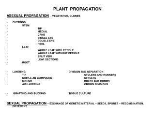 PLANT  PROPAGATION  ASEXUAL PROPAGATION  - VEGETATIVE, CLONES  CUTTINGS  STEM   TIP   MEDIAL   CANE   SINGLE EYE   DOUBL