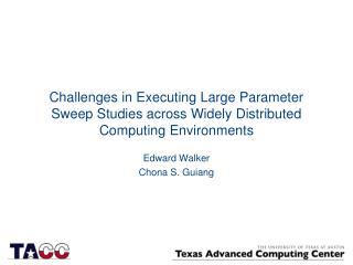 Challenges in Executing Large Parameter Sweep Studies across Widely Distributed Computing Environments