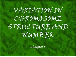 variation in chromosome structure and number
