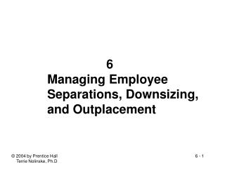 6 Managing Employee Separations, Downsizing,  and Outplacement