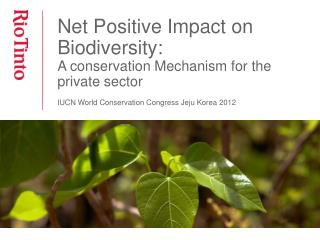 Net Positive Impact on Biodiversity: A conservation Mechanism for the private sector