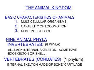 THE ANIMAL KINGDOM   BASIC CHARACTERISTICS OF ANIMALS:            1.                   2.                   3.