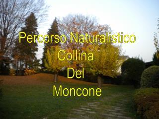 Percorso Naturalistico Collina  Del  Moncone