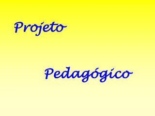 projeto          pedag gico