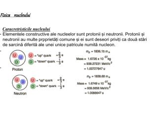 Fizica    nucleului