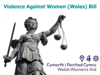 Violence Against Women Wales Bill