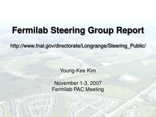 Fermilab Steering Group Report  fnal