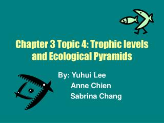 Chapter 3 Topic 4: Trophic levels and Ecological Pyramids