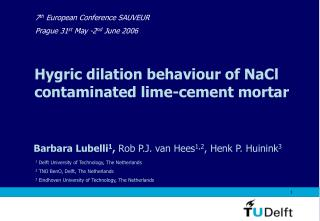 Hygric dilation behaviour of NaCl contaminated lime-cement mortar