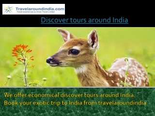 Discover tours around India