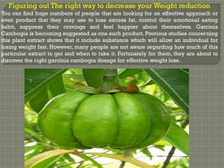 Figuring out The right way to decrease your Weight reduction