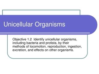 types of microorganisms