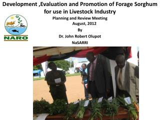 Development ,Evaluation and Promotion of Forage Sorghum for use in Livestock Industry