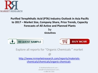 Report on Asia Purified Terephthalic Acid (PTA) Industry 201