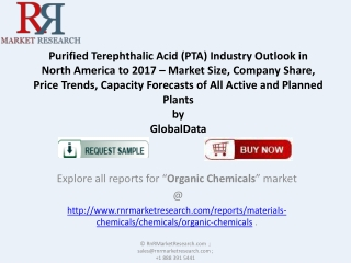 Purified Terephthalic Acid (PTA) Industry Trends and Forecas